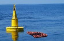 Corilla supply buoys for dolphin-safe tuna fishing